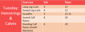 Michelle's Workout